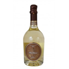 ASTORIA SPUMANTE BRUT MILLESIMATO VILLA SELLI CL.75